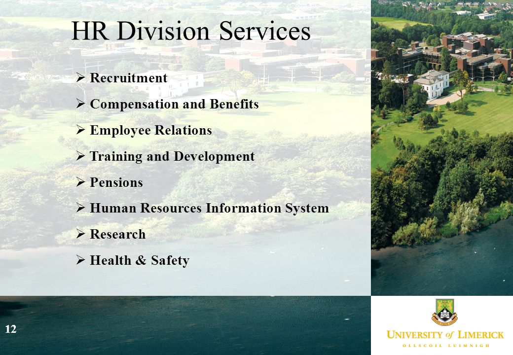 12  Recruitment  Compensation and Benefits  Employee Relations  Training and Development  Pensions  Human Resources Information System  Research  Health & Safety HR Division Services