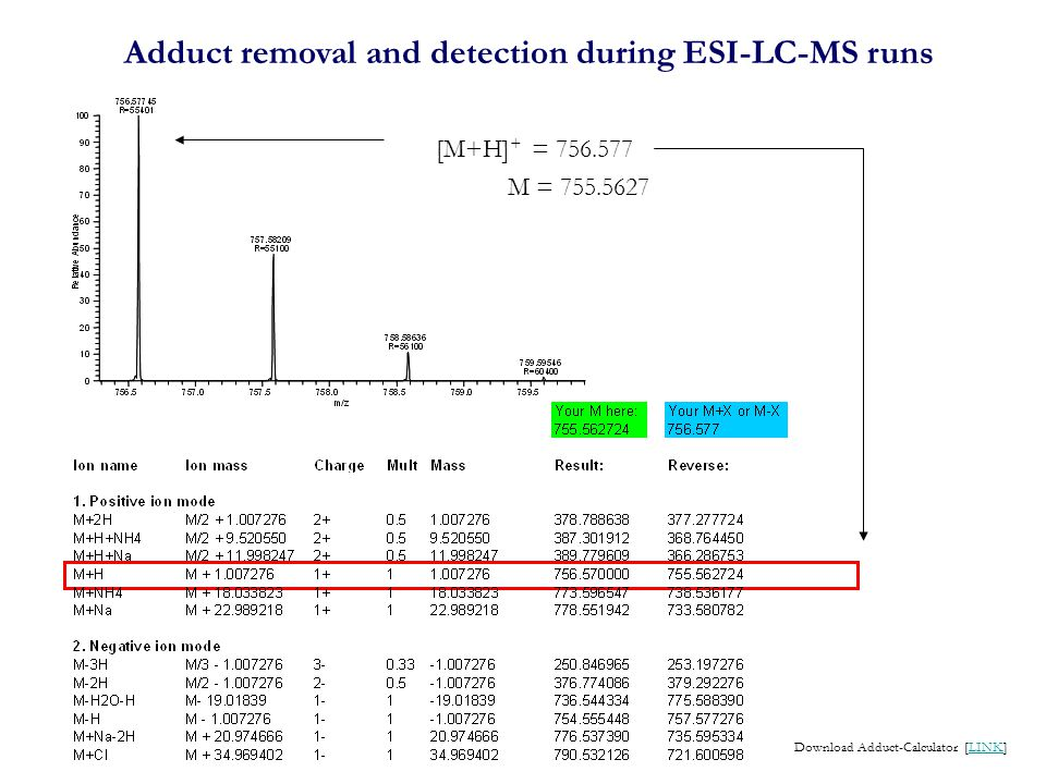 Adduct removal and detection during ESI-LC-MS runs [M+H] + = 756.577 Download Adduct-Calculator [LINK]LINK M = 755.5627