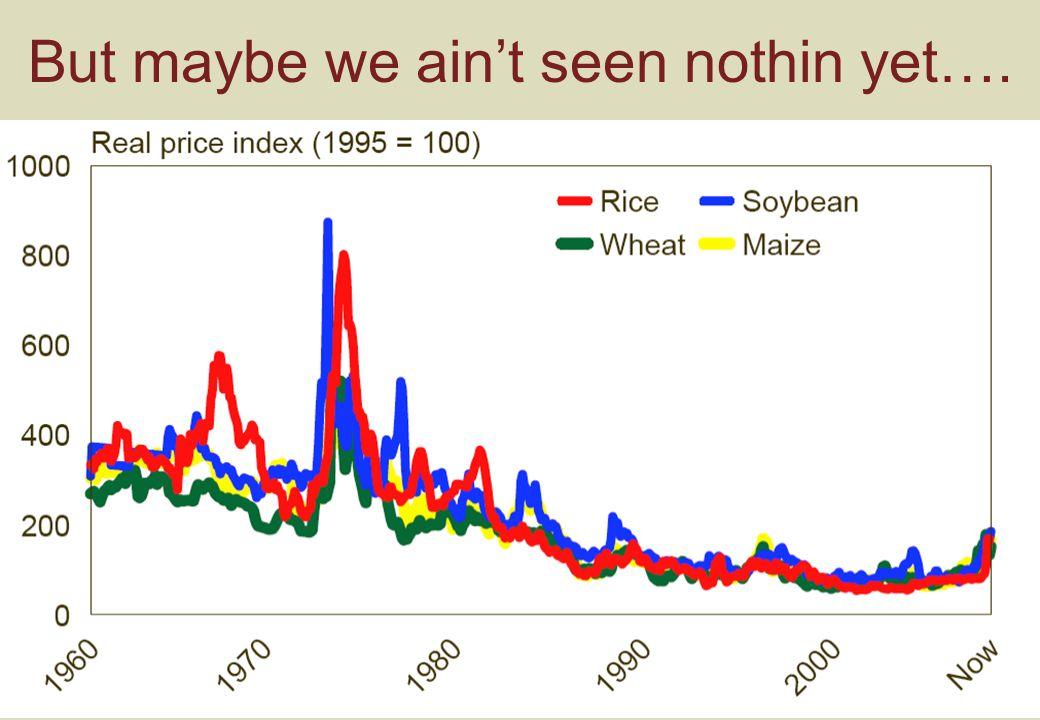 Food Supply Scenarios (Chatham House 2008)