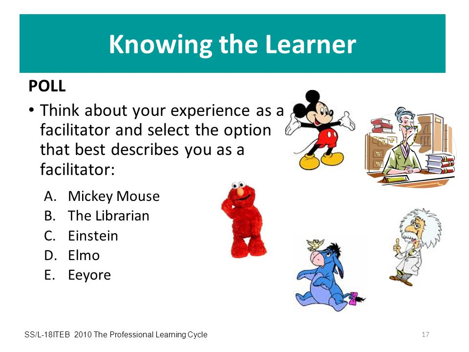 Knowing the Learner POLL Think about your experience as a facilitator and select the option that best describes you as a facilitator: A.Mickey Mouse B