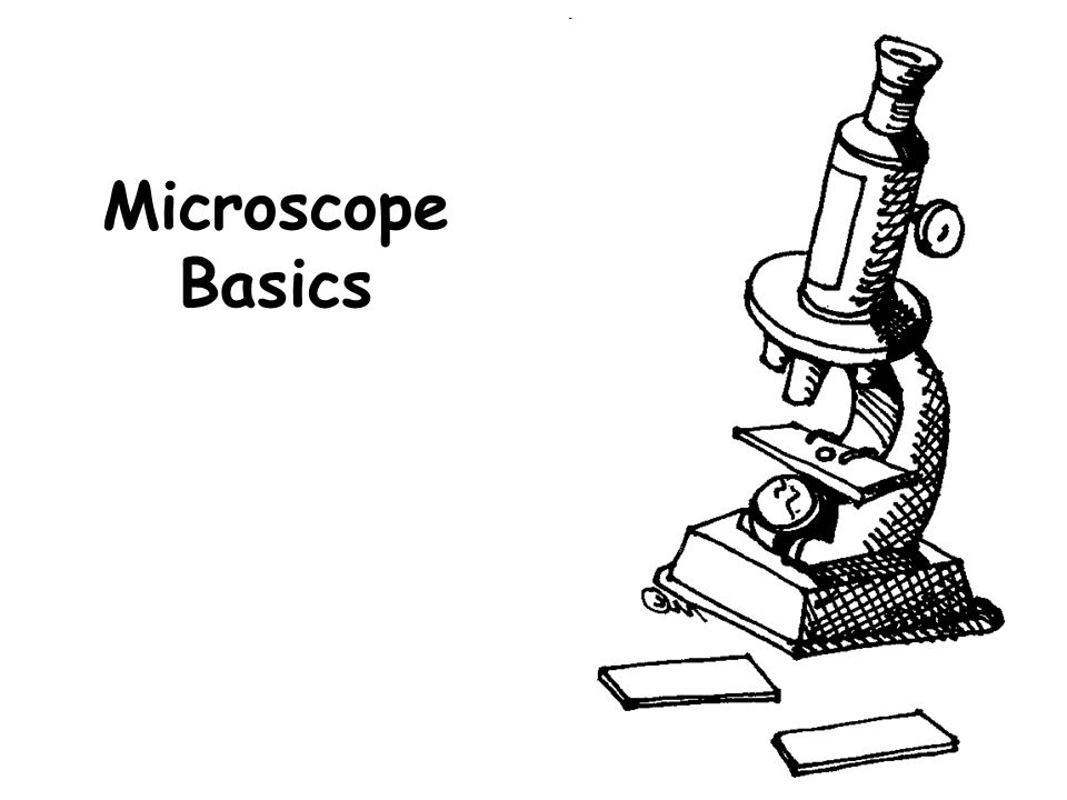 1.Ocular lens (Eyepiece) 2.Body Tube 3.Nosepiece Holds the HIGH- and LOW- power objective LENSES; can be rotated to change MAGNIFICATION.