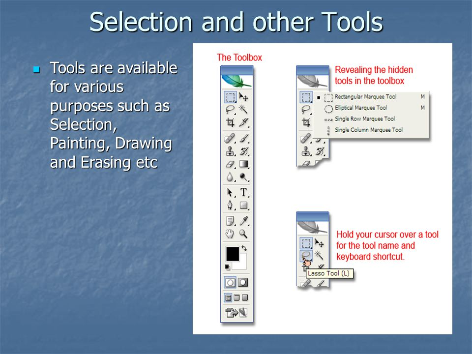 Selection and other Tools Tools are available for various purposes such as Selection, Painting, Drawing and Erasing etc Tools are available for variou
