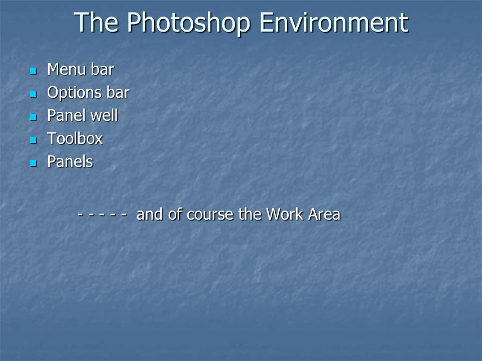 The Photoshop Environment Menu bar Menu bar Options bar Options bar Panel well Panel well Toolbox Toolbox Panels Panels - - - - - and of course the Wo