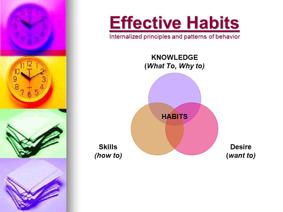The 7 Habits Allow You To: Empower Yourself Empower Yourself Empower Your Classroom or School Empower Your Classroom or School Maintain Your Growth Maintain Your Growth