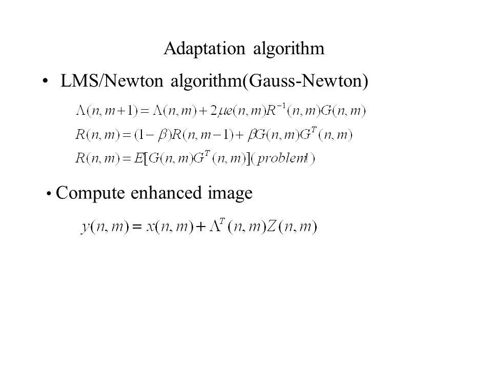 Adaptation algorithm LMS/Newton algorithm(Gauss-Newton) Compute enhanced image