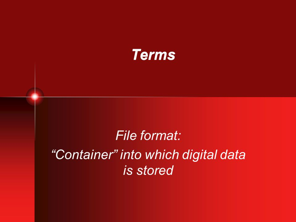 Terms File format: Container into which digital data is stored