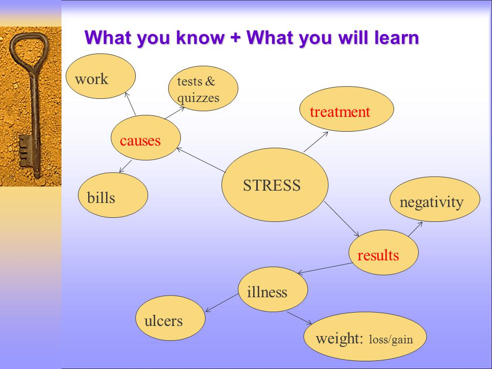 What you know + What you will learn STRESS treatment results illness ulcers weight: loss/gain negativity causes work bills tests & quizzes