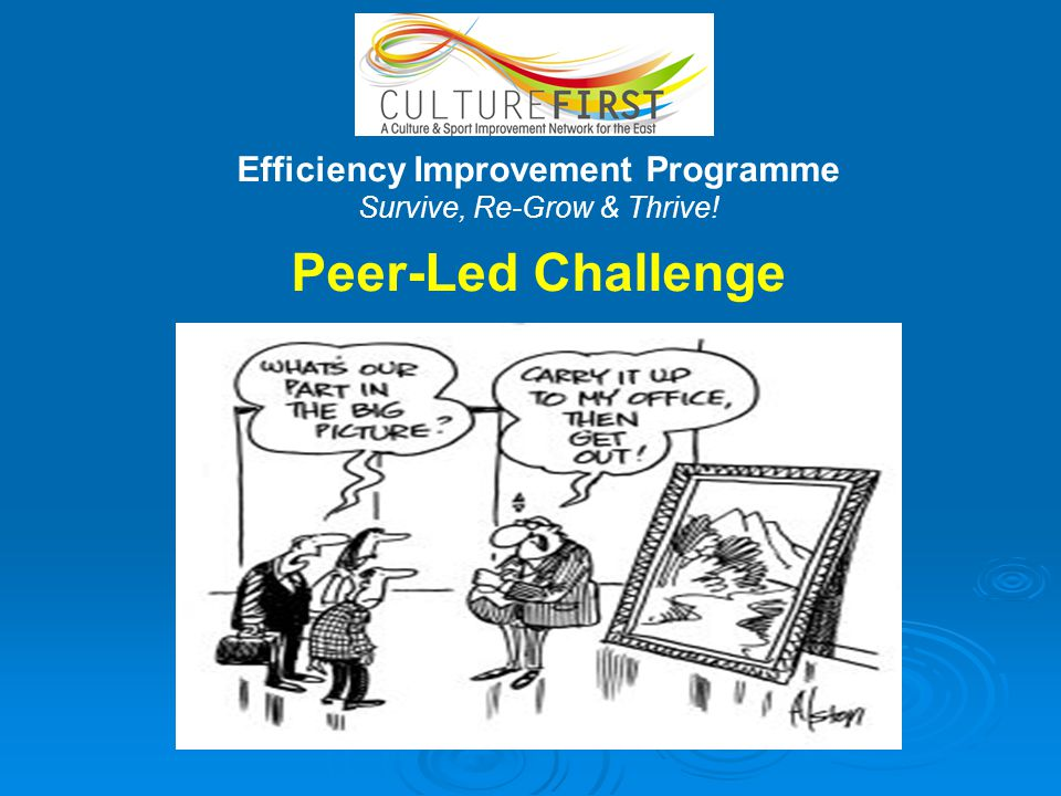 Efficiency Improvement Programme Survive, Re-Grow & Thrive! Peer-Led Challenge
