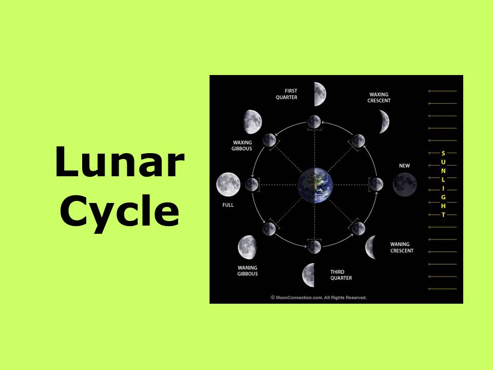 What it is .Regular cycle in the Earth-moon system producing the phases of the moon.