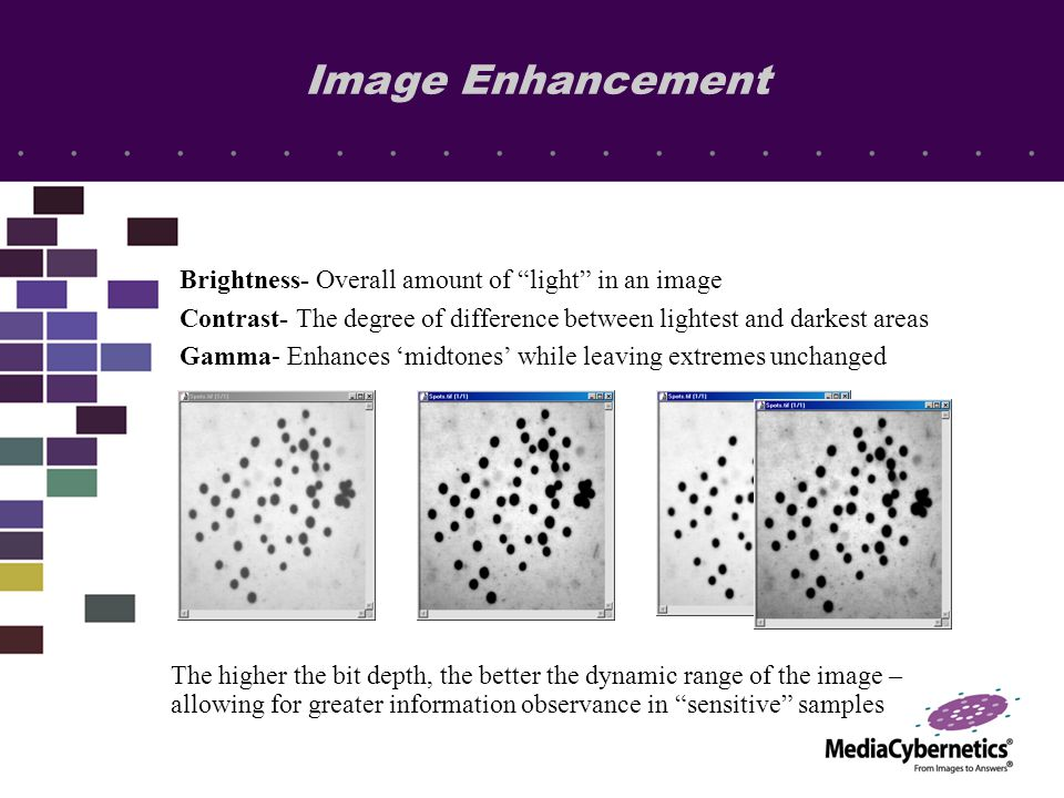 Brightness- Overall amount of light in an image Contrast- The degree of difference between lightest and darkest areas Gamma- Enhances 'midtones' while leaving extremes unchanged The higher the bit depth, the better the dynamic range of the image – allowing for greater information observance in sensitive samples Image Enhancement