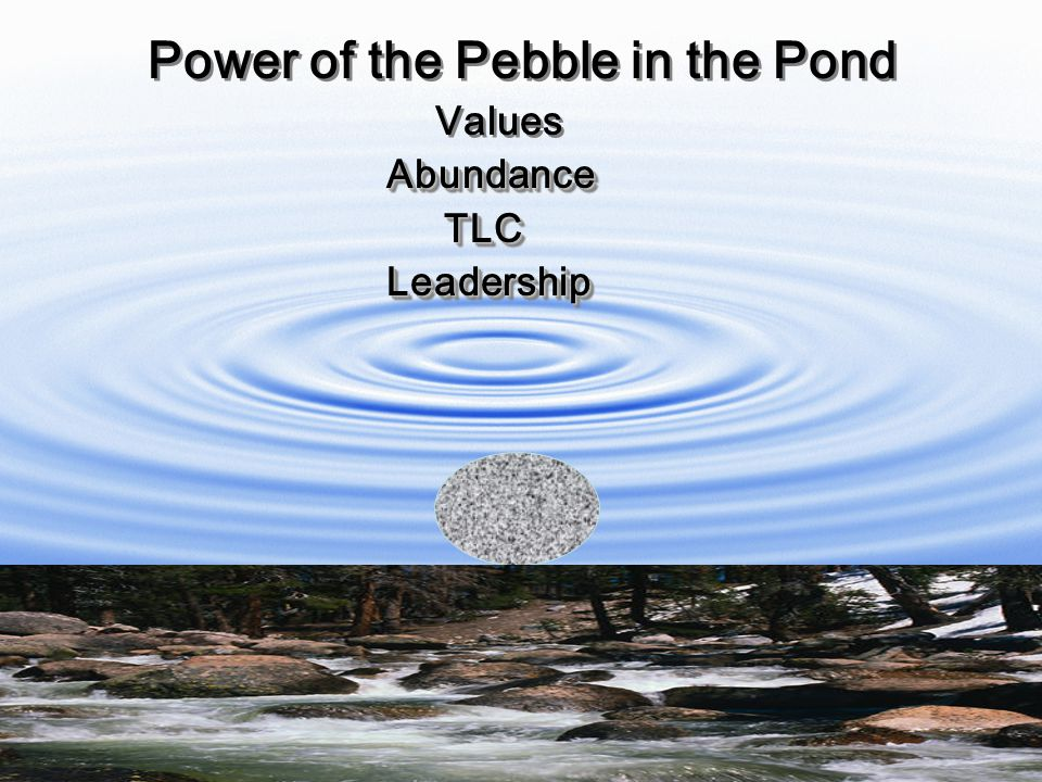 Copyright 2010 Margaret May Damen Power of the Pebble in the Pond Values Abundance Abundance TLC TLC Leadership Leadership Power of the Pebble in the Pond Values Abundance Abundance TLC TLC Leadership Leadership