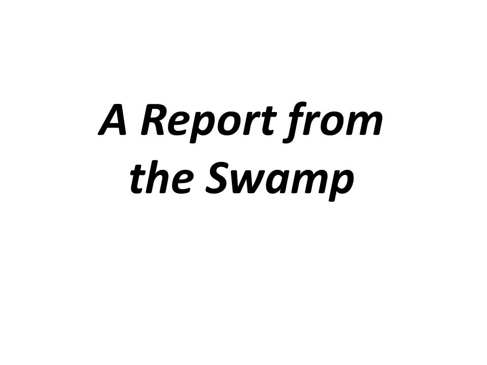 A Report from the Swamp