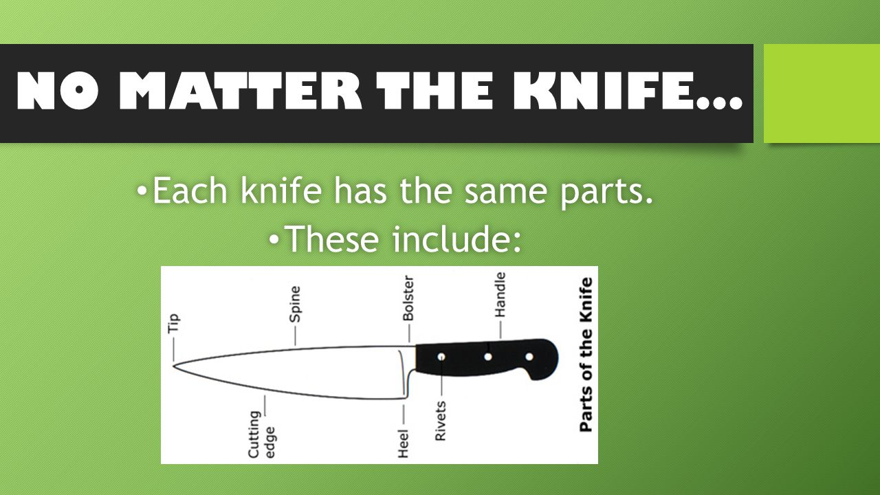 NO MATTER THE KNIFE… Each knife has the same parts.