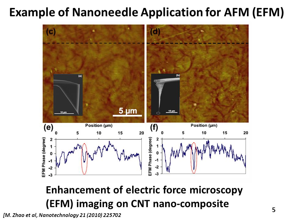 5 Example of Nanoneedle Application for AFM (EFM) Enhancement of electric force microscopy (EFM) imaging on CNT nano-composite [M.
