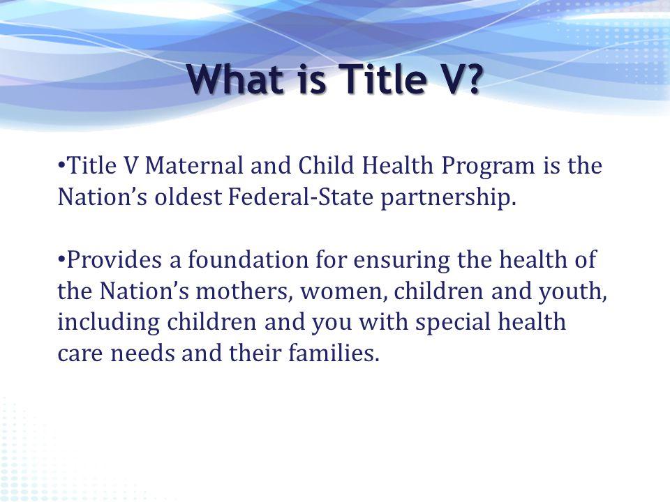 What is Title V.Block grant program was established in 1981.