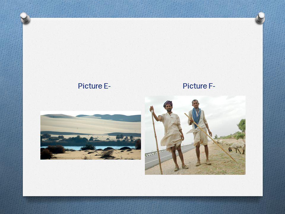 Picture E- Picture F-