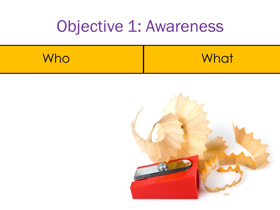 Objective 2: Knowledge Who What