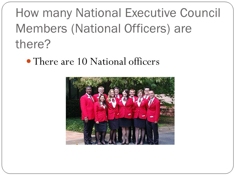 How many National Executive Council Members (National Officers) are there.