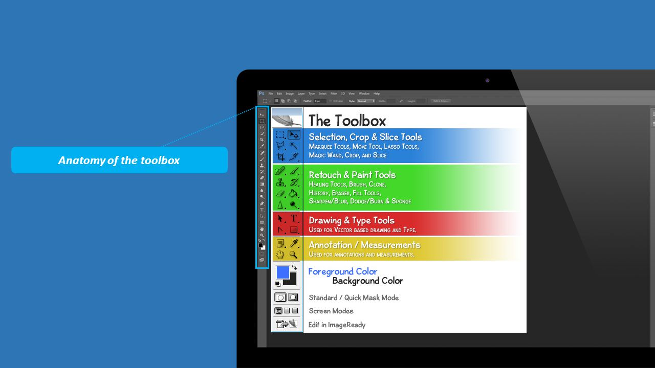 Anatomy of the toolbox