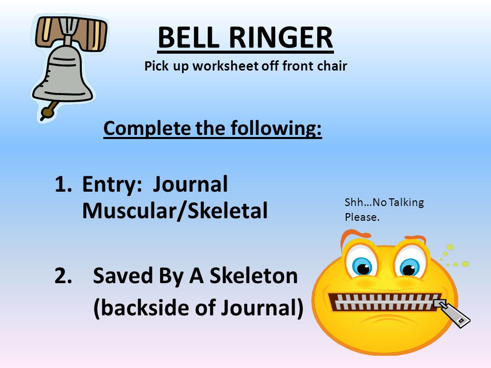 BELL RINGER Pick up worksheet off front chair Complete the following: 1.Entry: Journal Muscular/Skeletal 2.