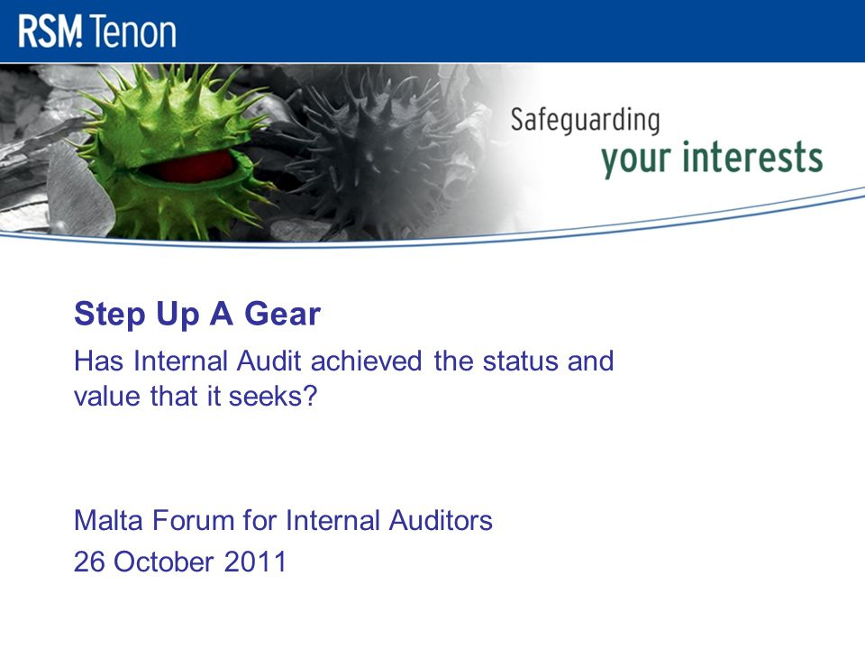 Step Up A Gear Has Internal Audit achieved the status and value that it seeks.