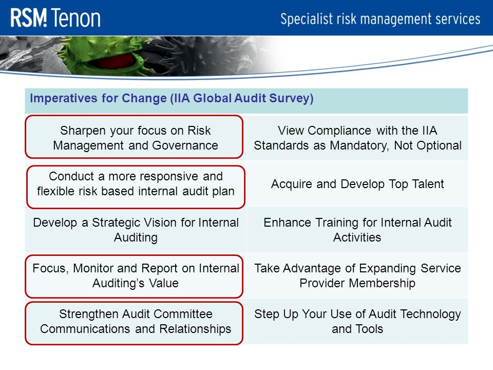 Imperatives for Change (IIA Global Audit Survey) Sharpen your focus on Risk Management and Governance View Compliance with the IIA Standards as Mandatory, Not Optional Conduct a more responsive and flexible risk based internal audit plan Acquire and Develop Top Talent Develop a Strategic Vision for Internal Auditing Enhance Training for Internal Audit Activities Focus, Monitor and Report on Internal Auditing's Value Take Advantage of Expanding Service Provider Membership Strengthen Audit Committee Communications and Relationships Step Up Your Use of Audit Technology and Tools