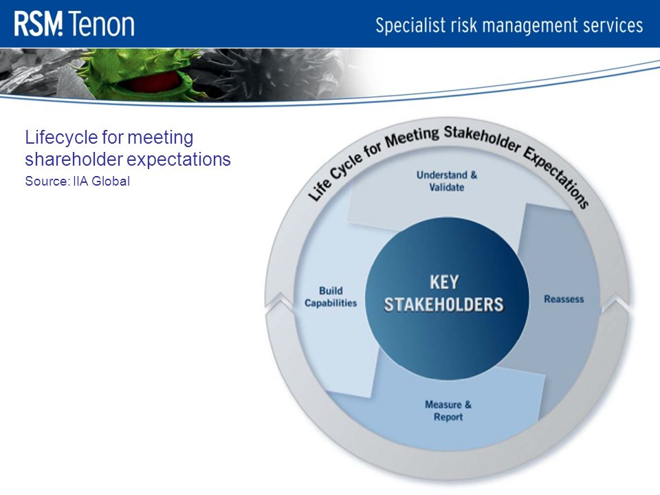 Lifecycle for meeting shareholder expectations Source: IIA Global