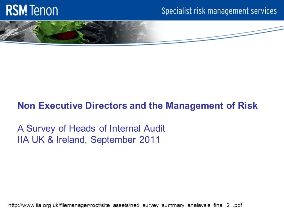 Non Executive Directors and the Management of Risk A Survey of Heads of Internal Audit IIA UK & Ireland, September 2011 http://www.iia.org.uk/filemanager/root/site_assets/ned_survey_summary_analaysis_final_2_.pdf
