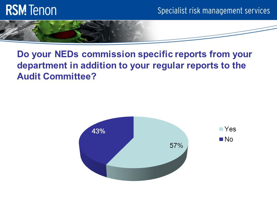 Do your NEDs commission specific reports from your department in addition to your regular reports to the Audit Committee