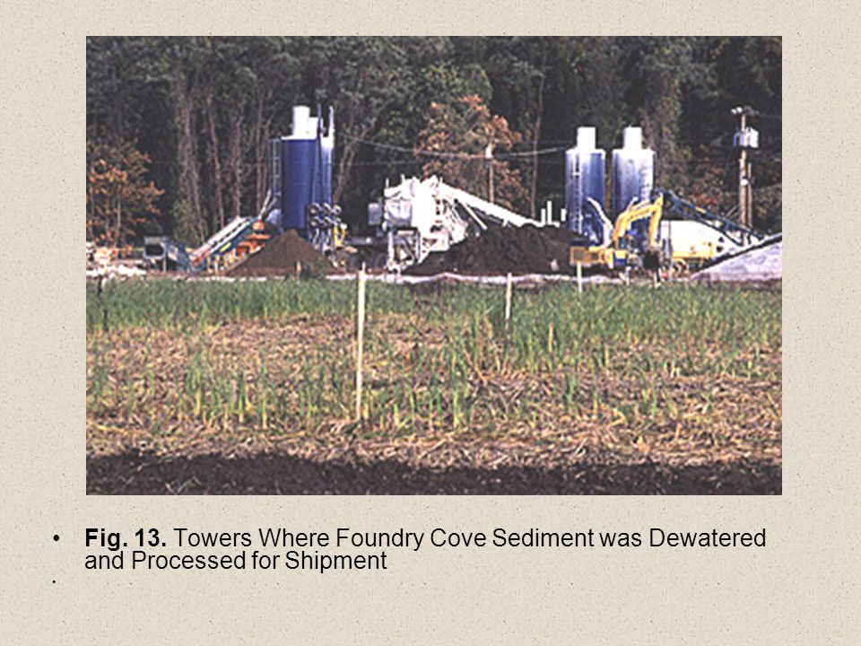 Fig. 13. Towers Where Foundry Cove Sediment was Dewatered and Processed for Shipment