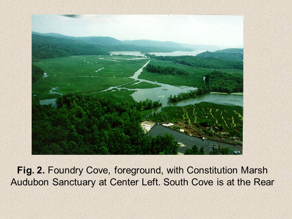 Fig. 2. Foundry Cove, foreground, with Constitution Marsh Audubon Sanctuary at Center Left.
