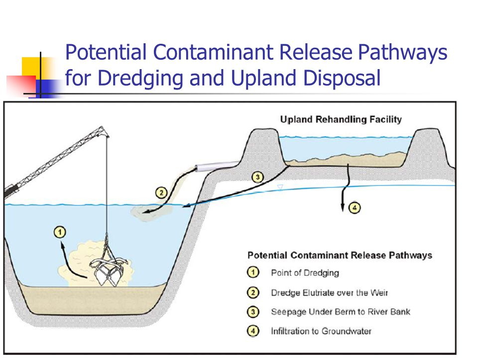 4/27/2015 Potential Physical Disturbance of Containment Cells Natural erosion (floods).