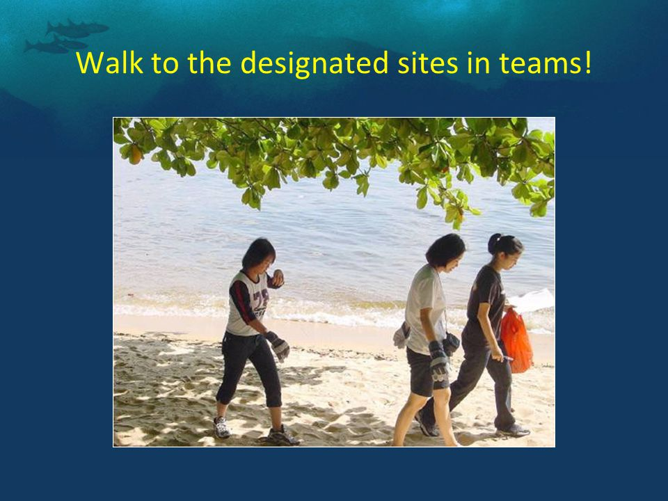 Walk to the designated sites in teams!