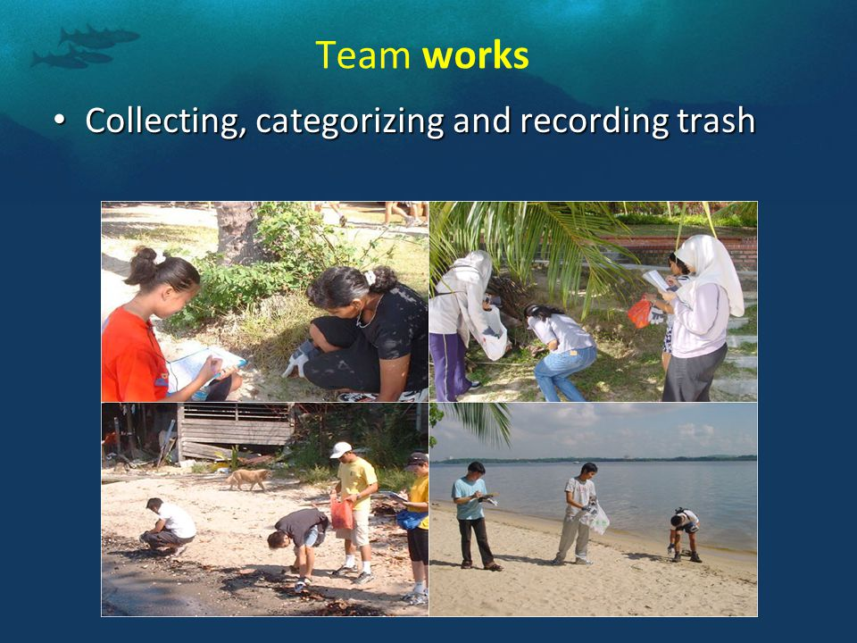 Team works Collecting, categorizing and recording trash Collecting, categorizing and recording trash