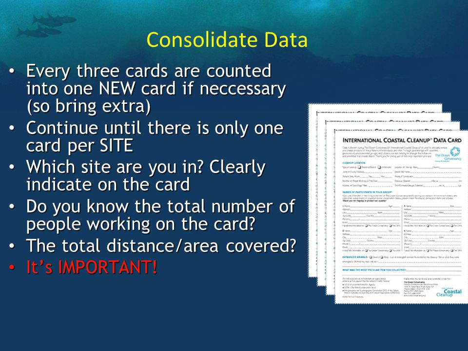 Consolidate Data Every three cards are counted into one NEW card if neccessary (so bring extra) Every three cards are counted into one NEW card if neccessary (so bring extra) Continue until there is only one card per SITE Continue until there is only one card per SITE Which site are you in.