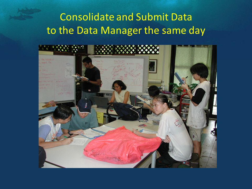 Consolidate and Submit Data to the Data Manager the same day
