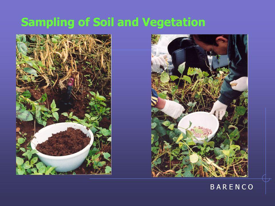 B A R E N C O Sampling of Soil and Vegetation