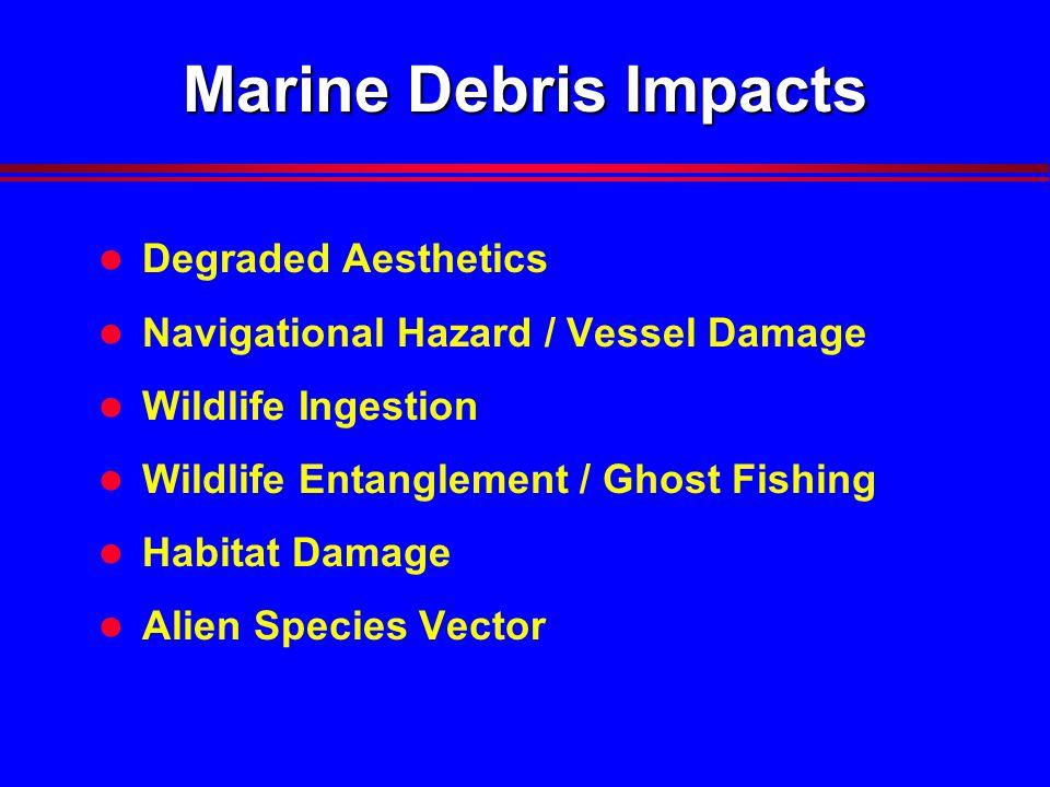 Marine Debris Impacts l Degraded Aesthetics l Navigational Hazard / Vessel Damage l Wildlife Ingestion l Wildlife Entanglement / Ghost Fishing l Habitat Damage l Alien Species Vector