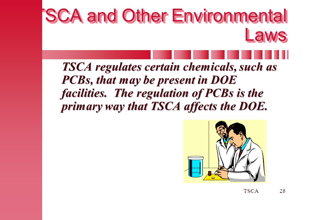 TSCA28 TSCA and Other Environmental Laws TSCA regulates certain chemicals, such as PCBs, that may be present in DOE facilities. The regulation of PCBs