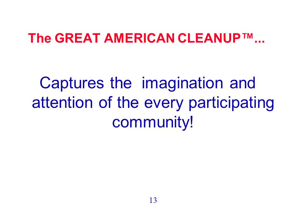 The GREAT AMERICAN CLEANUP™... Captures the imagination and attention of the every participating community! 13