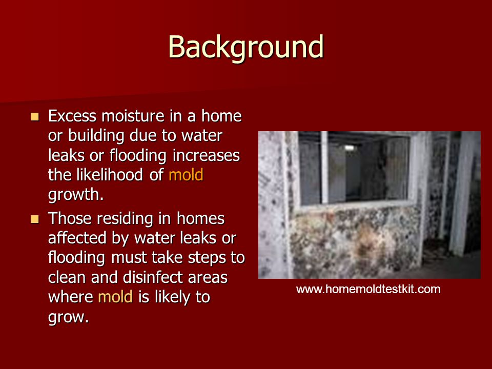 Clean Up If the mold area is less than 10 square feet………..