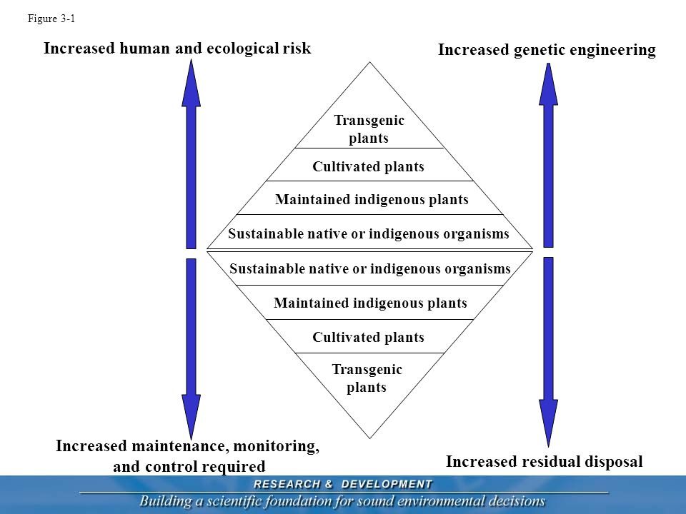 Increased residual disposal Increased human and ecological risk Increased genetic engineering Increased maintenance, monitoring, and control required Sustainable native or indigenous organisms Maintained indigenous plants Cultivated plants Transgenic plants Figure 3-1 Sustainable native or indigenous organisms Maintained indigenous plants Cultivated plants Transgenic plants