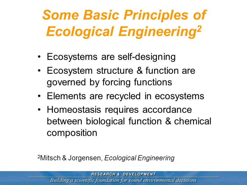 Some Basic Principles of Ecological Engineering 2 Ecosystems are self-designing Ecosystem structure & function are governed by forcing functions Elements are recycled in ecosystems Homeostasis requires accordance between biological function & chemical composition 2 Mitsch & Jorgensen, Ecological Engineering