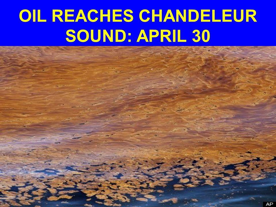 OIL REACHES CHANDELEUR SOUND: APRIL 30