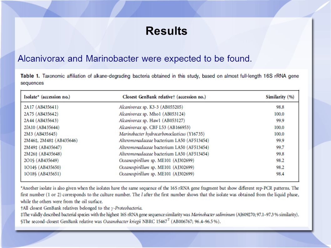 Results Alcanivorax and Marinobacter were expected to be found.