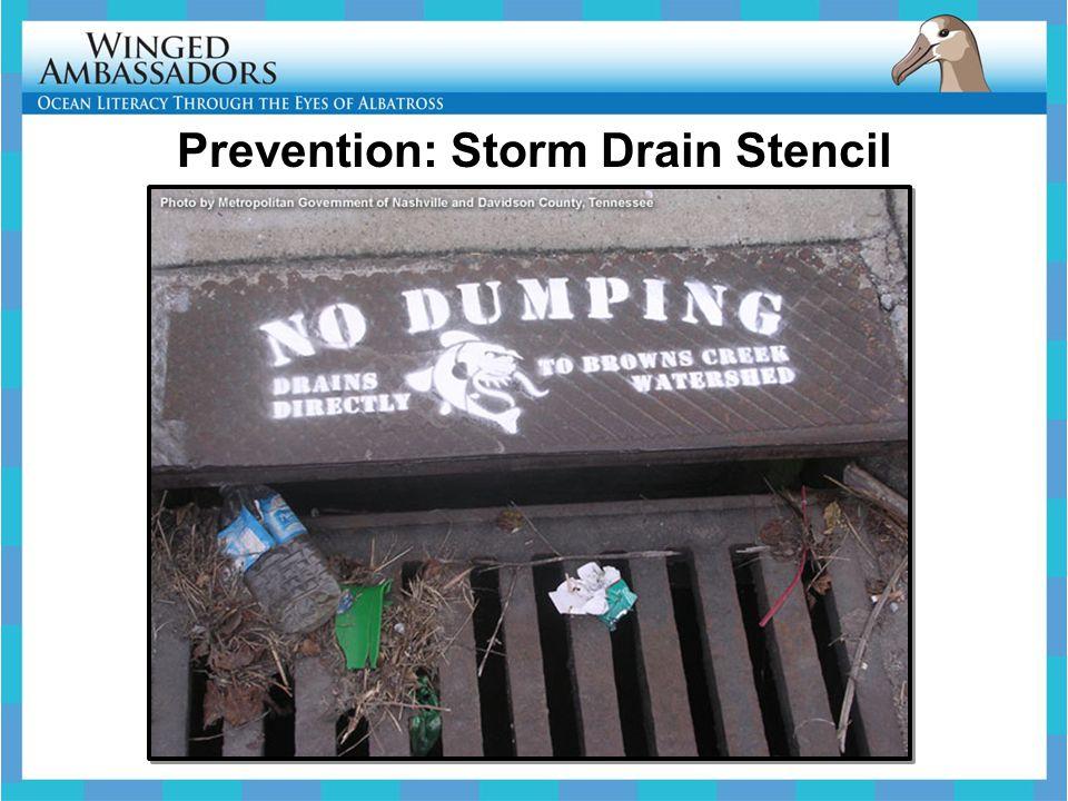 Prevention: Storm Drain Stencil