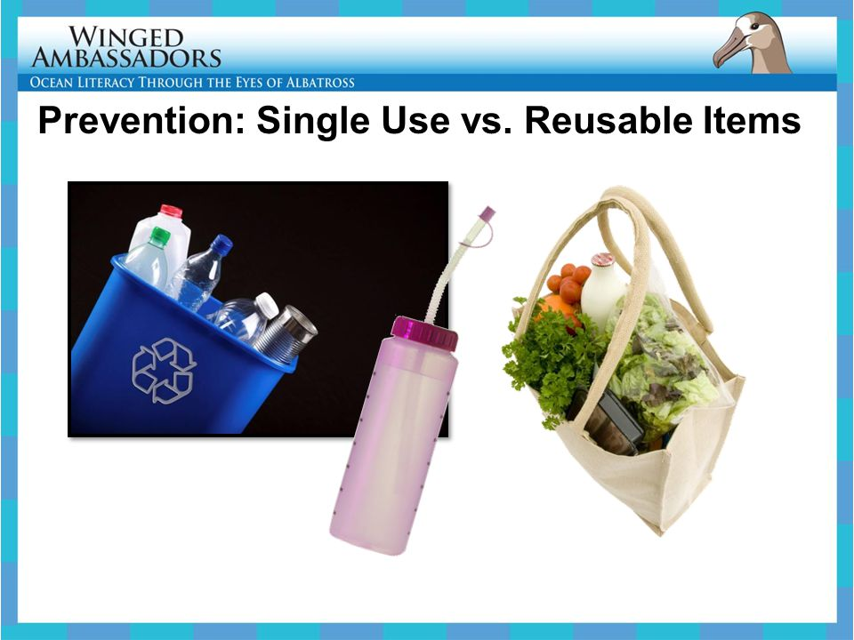 Prevention: Single Use vs. Reusable Items