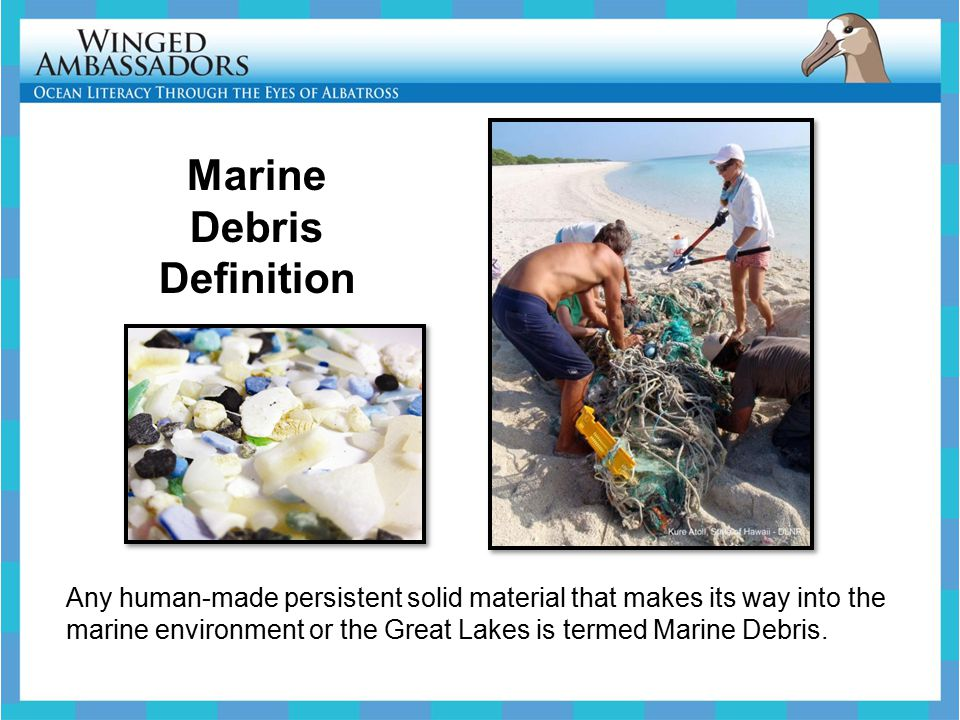 Most Marine Debris comes from Land Litter enters the marine environment through many pathways: -Some are short and direct: such as, a sand shovel left behind at the beach -Others are longer: such as, a balloon floating away in the breeze -And others can be even longer: such as, trash flowing down a river
