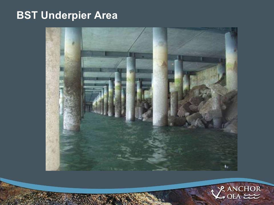 BST Underpier Area