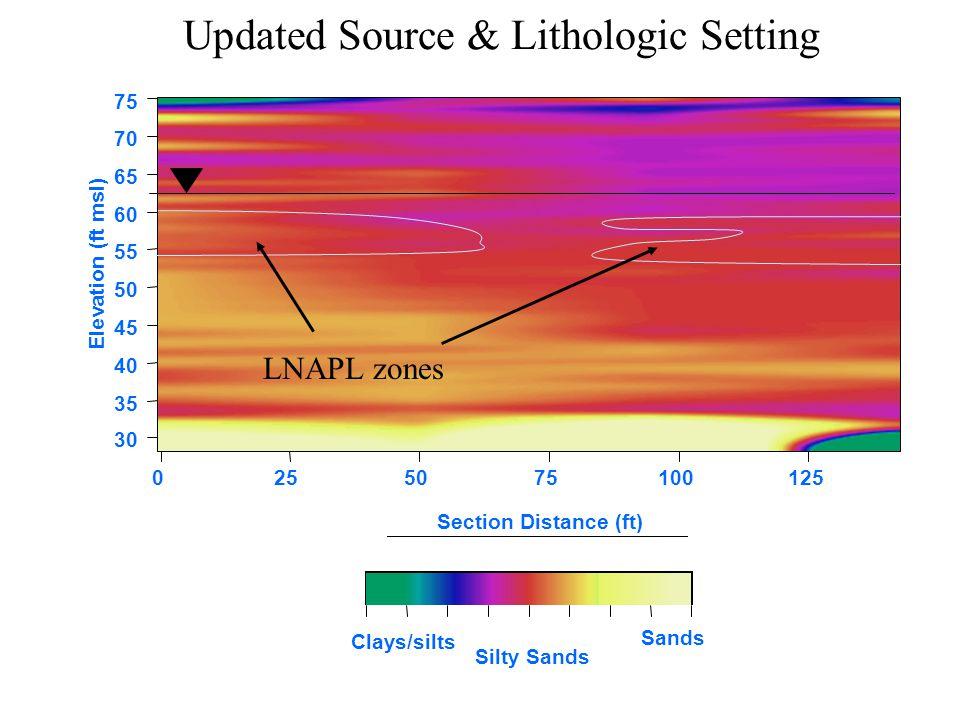 0255075100125 75 70 65 60 55 50 45 40 35 30 Section Distance (ft) Elevation (ft msl) Clays/silts Updated Source & Lithologic Setting LNAPL zones Sands Silty Sands